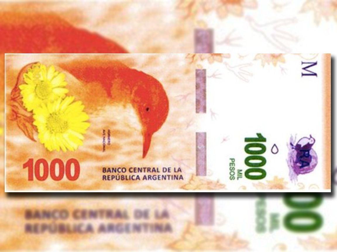 En octubre lanzarán el billete de $1000 con la imagen del hornero