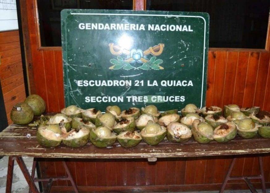 """Descubren """"narcococos"""" en un micro en Jujuy"""