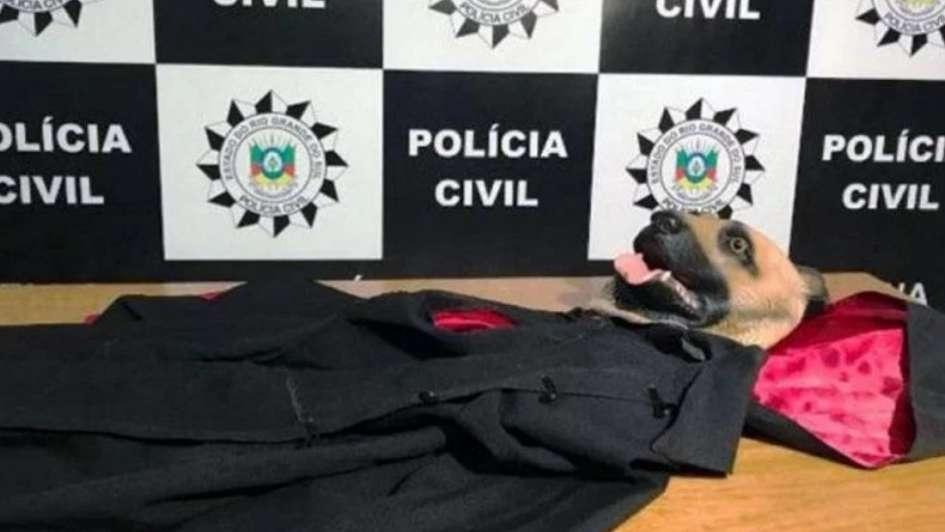 Dos niños fueron brutalmente asesinados durante rito satánico — Brasil