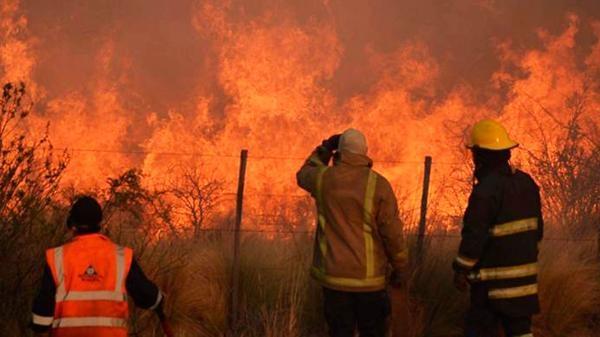 Al menos 120 mil hectáreas quemadas por incendios forestales — Mendoza