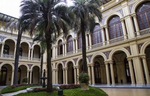El Gobierno pagará 236.000 pesos por una palmera para la Casa Rosada