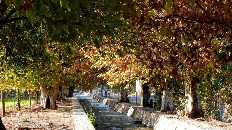 El otoño le roba un día al verano y empieza esta tarde