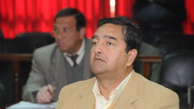 """El municipio de Antofagasta planeaba  """"engordar corderos"""" con leche para pobres"""