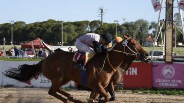 Un caballo catamarqueño es furor en Córdoba